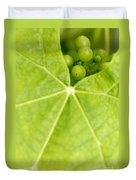 Maturing Wine Grapes Duvet Cover