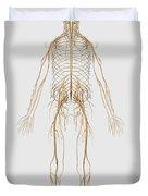 Medical Illustration Of Peripheral Duvet Cover