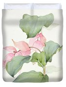 Medinilla Magnifica Duvet Cover by Sarah Creswell