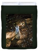 Meerkat     Say What Duvet Cover