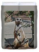 Meerkat 2 Duvet Cover