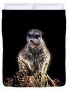 Meerkat Lookout Duvet Cover