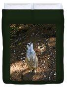 Meerkat Poising Duvet Cover