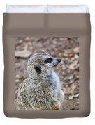 Meerkat Portrait Duvet Cover