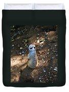 Meerkat Responding Duvet Cover