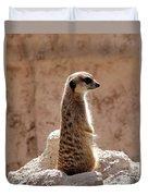 Meerkat Standing On Rock And Watching Duvet Cover
