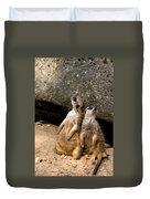 Meerkats Keeping An Eye Out Part 2 Duvet Cover