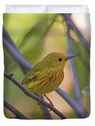 Mellow Yellow - American Warbler - Setophaga Petechia Duvet Cover