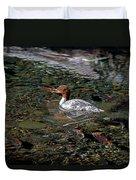Merganser And Spawning Salmon - Odell Lake Oregon Duvet Cover