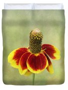 Mexican Hat IIi Duvet Cover