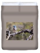 Mexican Jay Duvet Cover