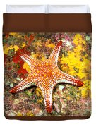 Mexico, Gulf Sea Star Duvet Cover