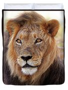 Mighty Lion In South Africa Duvet Cover