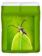 Milkweed Beetle Duvet Cover