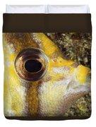 Milletseed Butterflyfish Duvet Cover