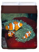 Milne Bay, Marine Duvet Cover