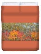 Minnesota Autumn 55 Duvet Cover