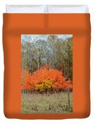 Minnesota Autumn 57 Duvet Cover