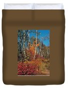Minnesota  Autumn Path Duvet Cover