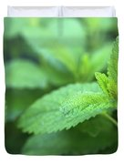 Mint Mood Duvet Cover