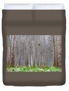 Mistery Poplars Woods  Duvet Cover