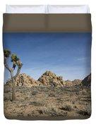 Mohave Desert Duvet Cover