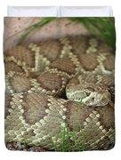 Mojave Green Duvet Cover
