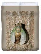 Molting Cicada #2 Duvet Cover