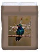 Molting Hummingbird Duvet Cover
