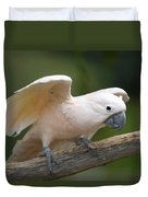 Moluccan Cockatoo At The Omaha Zoo Duvet Cover