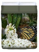 Monarch And The Butterfly Bush  Duvet Cover