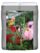 Monarch Butterfly Caterpillar Duvet Cover