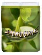 Monarch Caterpillar Duvet Cover