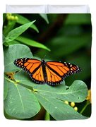 Monarch Butterfly Resting On Cassia Tree Leaf Duvet Cover