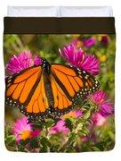 Monarch Feeding Duvet Cover