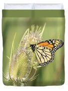 Monarch On A Thistle  Duvet Cover