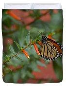 Monarch On Cigar Plant Duvet Cover