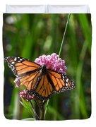 Monarch On Joe Pye Duvet Cover