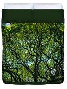 Monkeypod Canopy Duvet Cover