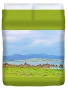 Mono Lake Image Duvet Cover