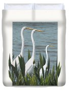 Montage With 3 Great White Egrets Duvet Cover