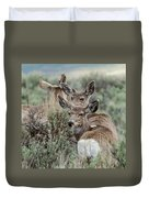 Montana Mule Deer On A Spring Night Duvet Cover