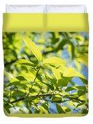 Monterrey Oak Leaves In Spring Duvet Cover