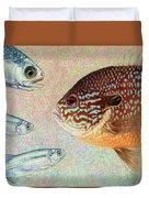 Mooneyes, Sunfish Duvet Cover by James W Johnson