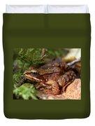 Moor Frog In September  Duvet Cover