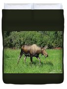 Moose Cow Grazing Duvet Cover