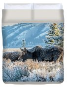 Moose In Cold Winter Ice Duvet Cover