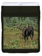 Moose In Shrubs Duvet Cover