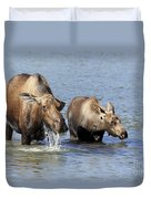 Moose Mama With Her Calf Duvet Cover