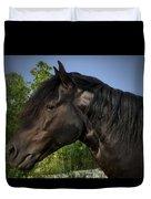 Morgan Horse Duvet Cover